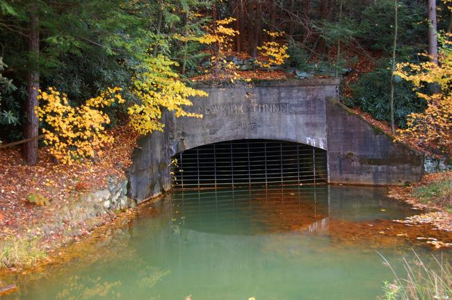 The Newkirk Tunnel near Tamaqua was the site of the installation of an oxic limestone system to treat mine discharge, which was put in place in 1999 through the efforts of the Eastern Schuylkill Recreation Commission, which obtained a grant for the…