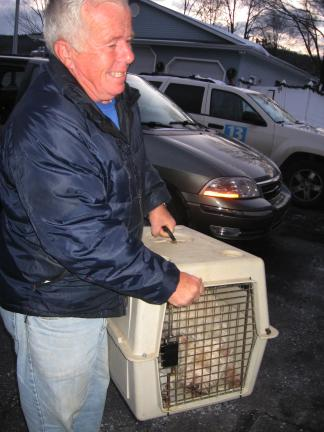 STACEY SOLT/SPECIAL TO THE TIMES NEWS  Volunteer Warren Winter carries the first dogs into the Mahoning Valley Animal Hospital.