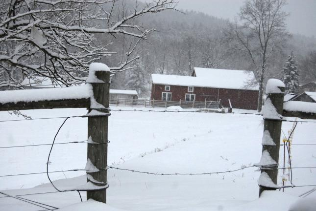 RON GOWER/TIMES NEWS The snow makes a pretty picture at this farm along Route 443 in Mahoning Township, but for most motorists, the driving situation today is anything but pretty. About a foot of snow was being projected for the area before the…
