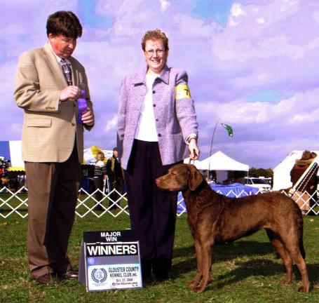 "Special to the Times News Rita, a 5-year-old Chesapeake Bay retriever owned by Cynthia ""Cindy"" Meyer, the former Cynthia Hedes, won the award for Best of Opposite Sex in her breed at the Westminster Kennel Club Dog Show in N.Y. Cindy and Rita are…"