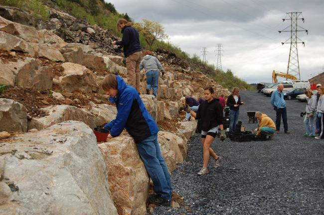 ELSA KERSCHNER/TIMES NEWS Lehigh Gap Nature Center planted native plants to hold the soil at its new rock wall. A large group of volunteers turned out to help. When the planting was complete, Sue Tansit of Edge of the Woods gave a talk on the…