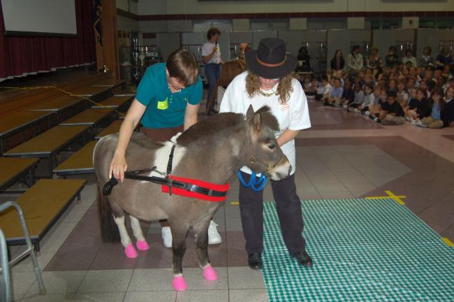 LINDA KOEHLER/TIMES NEWS Diane Morris and Dawn Loveland bring Little Bear, a miniature horse, into the auditorium at Pleasant Valley Elementary School to help the students understand what they do at Equi-librium.