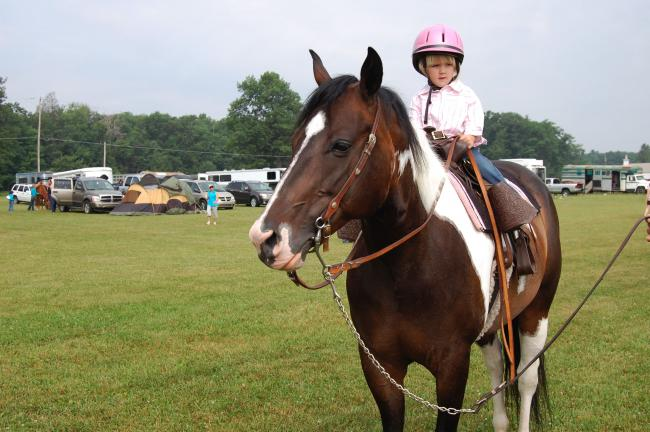 ELSA KERSCHNER/TIMES NEWS Taylor Eckhart, 2, of Palmerton, was the youngest rider in the Albrightsville show. It was the second time she showed. She placed fourth in lead line. Taylor was riding So Naturally Bold.