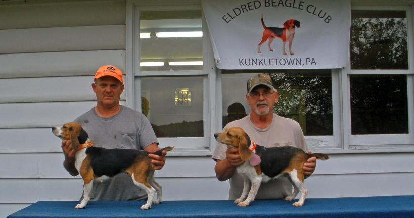 SPECIAL TO THE TIMES NEWS The 2010 Eldred Beagle Club 13-inch Class Fun Trial Run-Off Qualifiers are, left to right, Hanna with handler Roger George and Squirt with handler Sam Riboldi.