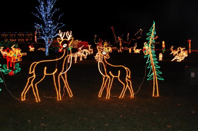 Gail Maholick/TIMES NEWS Franklin Festival of Lights opens Friday night at the Phifer Ice Dam Park.
