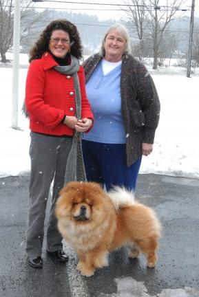 "Ron Gower/TIMES NEWS In this photo taken last February, Maddox, a chow chow, stands in front of Jan Kolnik of Palmerton, his handler, and Karen Tracy of Franklin Township, his owner. Yesterday Maddox won ""Best of Breed"" at the prestigious…"