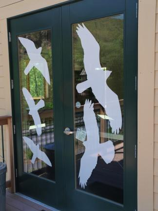 AL ZAGOFSKY/SPECIAL TO THE TIMES NEWS The Lehigh Gap Nature Center purchased a material marketed to prevent bird collisions with windows called CollidEscape, a perforated vinyl sheeting that goes on the outside of windows. The side towards the…