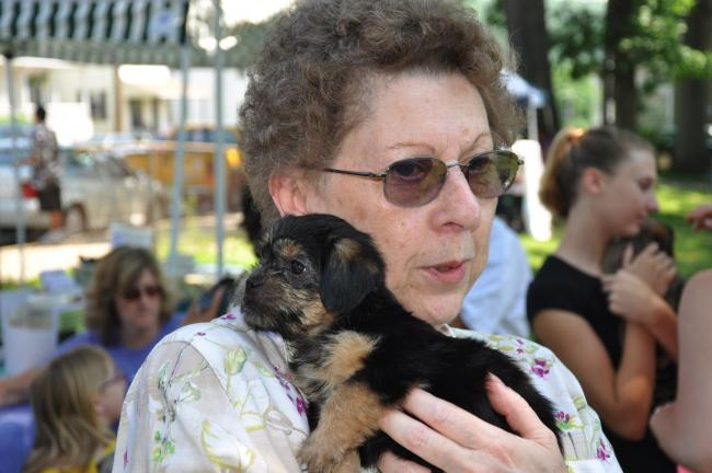 Judy Harris of Lehighton holds shorkie puppy she's considering adopting, during fourth annual Polkas for Pets event held Sunday at the Lehighton Community Grove.