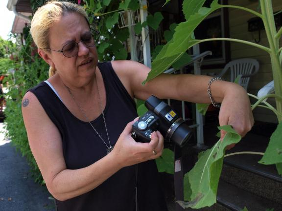 AL ZAGOFSKY/SPECIAL TO THE TIMES NEWS Shutterbugs like Jo Ann Poe-McGavin of Jim Thorpe are creating a revolution in the imagery of bugs. Because there are so many amateur shutterbugs they, in weeks, capture a wider variety of colors, life cycle…