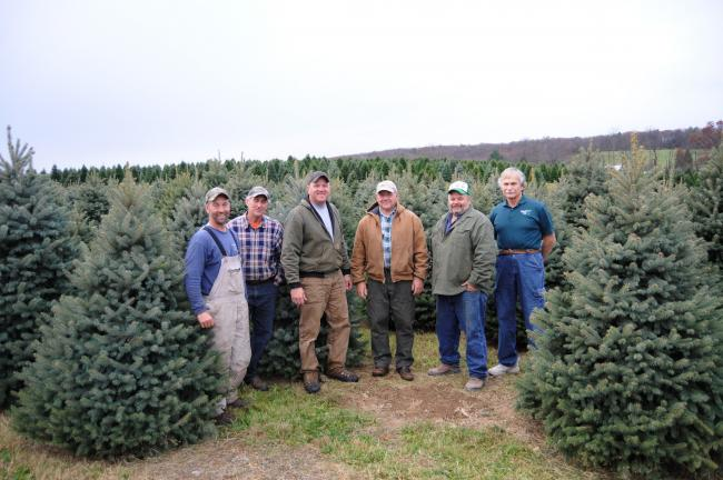 Ron Gower/TIMES NEWS Lehighton area Christmas tree growers met to discuss the annual Trees for Troops program, which kicks off Friday and continues through early December. Shown are, from left, Chris Botek and Francis Botek of Crystal Springs Tree…