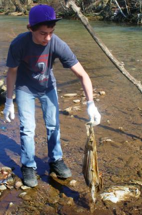 ANDREW LEIBENGUTH/TIMES NEWS Austin Fogel, 15, uses gloves to remove garbage from the riverbank of the Little Schuylkill River in Tamaqua.