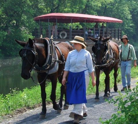 PHOTOS COURTESY NATIONAL CANAL MUSEUM With a day pass, you can both visit the National Canal Museum and take a heritage canal boat ride on the Josiah White II pulled by a pair of mules, Hank and George, and travel through an operable lock.