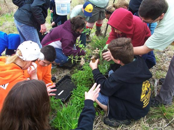 Audubon Society/Special to the TIMES NEWS Scouts plant native wildflowers at the Lehigh Gap Nature Center.