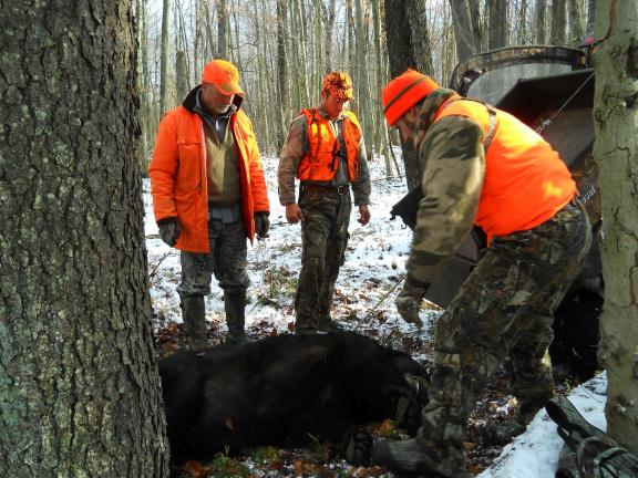 Last year, scenes such as this took place a record total of 4,350 times in Pennsylvania, as bear hunters broke the previous record of 4,164 bears taken in 2005.