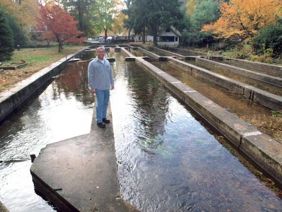AL ZAGOFSKY/SPECIAL TO THE TIMES NEWS The Cressley family would like to reopen a century old trout hatchery on Sawmill Run near Kriss Pines Lake. Sawmill Run has been rated as a wild trout fishery which would allow operation of a fish hatchery, but…