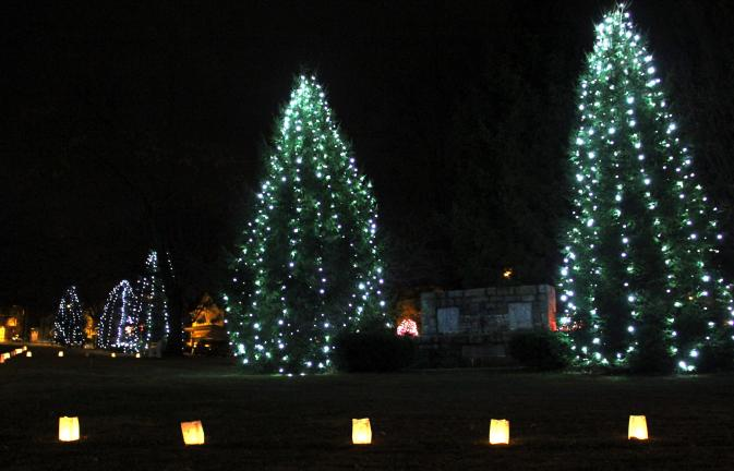 ANDREW LEIBENGUTH/TIMES NEWS Passersby to the Kennedy Park in Lansford find it hard to miss the blue lighted Christmas trees. They were turned on last Saturday as part of Lansford Alive's tree lighting program.