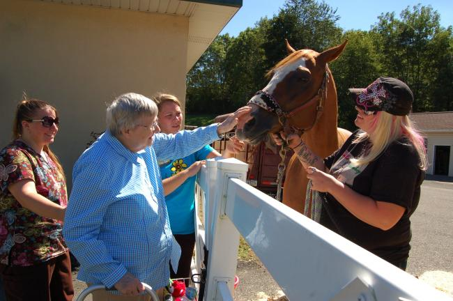 Gail Maholick/TIMES NEWS Leah Wehr strokes the nose of Partee Boy at the Mahoning Valley Fair held at the Mahoning Valley Nursing and Rehabilitation Center. From left are, Melissa Holland, staff, Wehr, Vanessa Smith, staff; and Jenelle Strohl, horse…